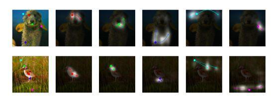 Ian Goodfellow等提出自注意力GAN,ImageNet图像合成获最优结果!