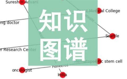 使用特定领域的文档构建知识图谱   教程