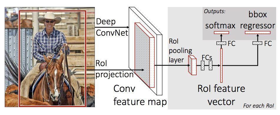 PyTorch专栏(八):微调基于torchvision 0.3的目标检测模型