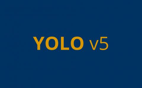 使用YOLO v5进行目标检测