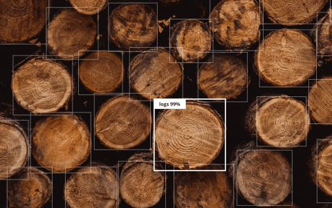 基于小数据集的目标检测:多少数据才够?
